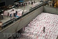 Rice classification at a plant in Bangkok, Thailand (Illustrative image. Source: AFP/VNA)