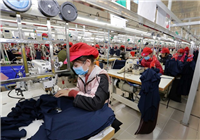 The factory of the Tinh Loi garment factory in Lai Vu Industrial Park in Kinh Thanh district, Hai Duong province (Photo: VNA)