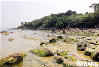 A corer of Nam O Bay in Lien Chieu district