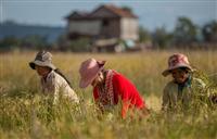 Illustrative image (Photo: khmertimeskh.com)